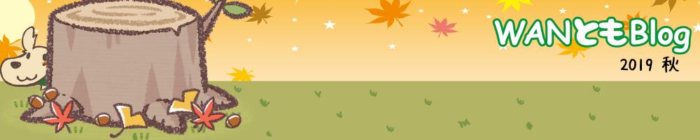 WAN友ブログ(ご来店感謝ブログ)〜札幌市豊平区の犬トリミング・無添加おやつ店WANPAKU(わんぱく)